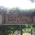 Menschenkette für die Kleingartenkolonie Durlach