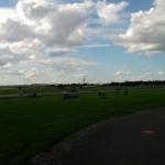 Baumspenden und Bäume für das Tempelhofer Feld