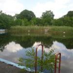 Verkauf gescheitert? Wernerbad als öffentliche Grünfläche erhalten!