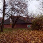 Unnötige Baumfällungen bei Aldi in Kaulsdorf?