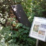 Wir bauen 'n Insektenhotel – Stadtteilgruppe Mahlsdorf-Kaulsdorf