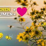 Bienen, Blumen und Bauten – was geht uns das an?
