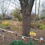 #Wahlkreistag: Bienenlehrgarten in Hellersdorf