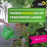 Aufruf zum Bäume gießen in Marzahn-Hellersdorf