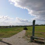 Über 2 Millionen Euro für Grünbauoffensive in Marzahn-Hellersdorf