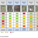 Standort für ein Freibad rückt näher – Ergebnisse der Machbarkeitsstudie liegen vor
