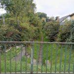 Was tun gegen Rattenbefall in Kaulsdorf?